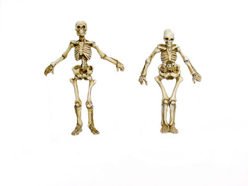 Skeleton-Dollies Set