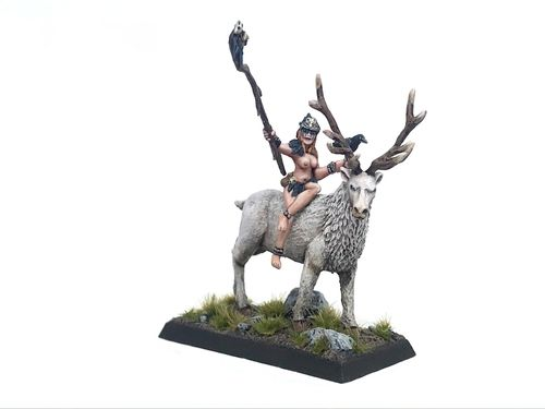 Njola, raven-shaman on stag